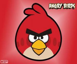 Puzzle de Pájaro Rojo (Red Bird)