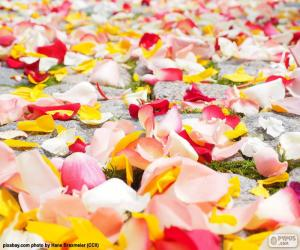 Puzzle de Pétalos de rosa, boda