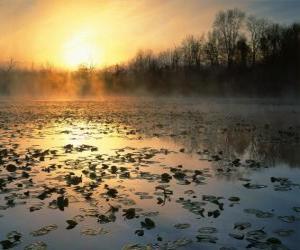 Puzzle de Paisaje de estanque en Ohio