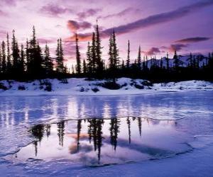 Puzzle de Paisaje invernal