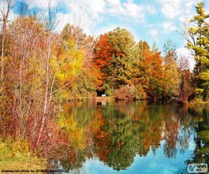 Puzzle de Paissaje del otoño