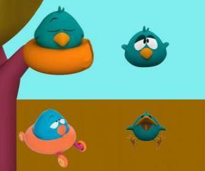 Puzzle de Pajaroto es un pájaro dormilón y muy gruñon