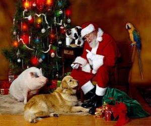 Puzzle de Papá Noel dando da comer a unos animales