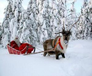 Puzzle de Papá Noel en su trineo con un reno sobre la nieve