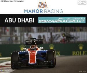 Puzzle de Pascal Wehrlein, GP Abu Dhabi 16