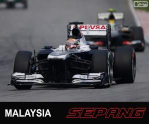 Puzzle de Pastor Maldonado - Williams - Sepang 2013