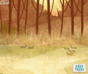 Puzzle de Patito feo nadando en el estanque con su hermanos