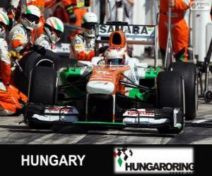 Puzzle de Paul di Resta - Force India - Hungaroring, 2013