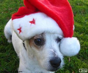 Puzzle de Perro de Navidad