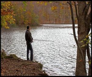 Puzzle de Pesca - Pescador de río en acción en un paisaje boscoso