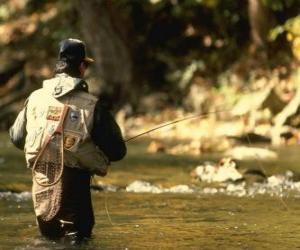 Puzzle de Pescador de río en acción