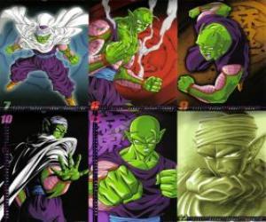 Puzzle de Piccolo un monstruo hijo de Piccolo Daimao y nacido para vengarse de Goku. Procede del planeta Namek. Es el primer maestro de Son Gohan.