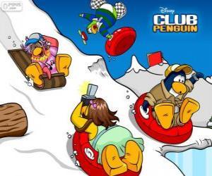 Puzzle de Pingüinos bajando en trineo