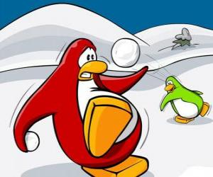 Puzzle de Pingüinos haciendo una guerra de nieve en el Club Penguin