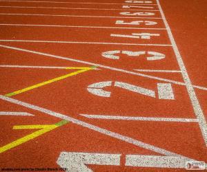 Puzzle de Pista atletismo 100 m