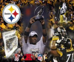Puzzle de Pittsburgh Steelers campeón de la AFC 2010-11