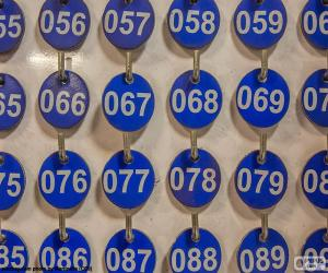Puzzle de Placas numeradas