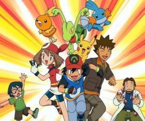 Puzzle de Pokémon