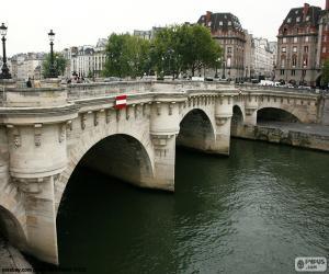 Puzzle de Pont Neuf, Paris