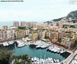 Puzzle de Puerto de Fontvieille, Mónaco