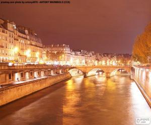 Puzzle de Río Sena de noche, París
