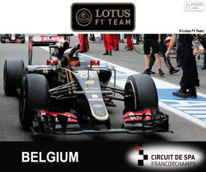 Puzzle de R. Grosjean, GP Bélgica 15
