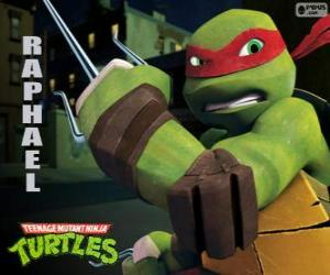 Puzzle de Raphael, la tortuga ninja más agresiva con sus armas en la mano, un par de Sai, una daga de tres puntas