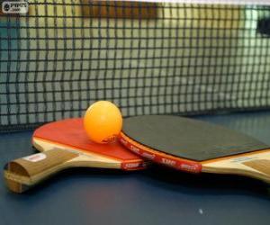 Puzzle de Raquetas y pelota de ping-pong