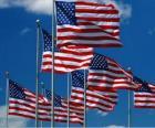 Bandera de Estados Unidos de América o USA