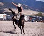 Rodeo - Jinete en la prueba del caballo con montura, montando un caballo salvaje