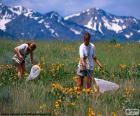 Niño cazando mariposas por el campo