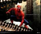 Spiderman, el hombre araña, en cuclillas