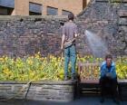 Jardinero cuidando las plantas, regando