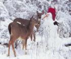 Dos ciervos junto a un muñeco de nieve