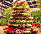 Árbol navideño hecho con ponsetias