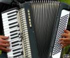 Un acordeón