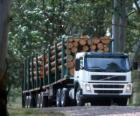 Camión de transporte de troncos