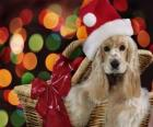 Perrito con gorro de Papá Noel dentro de una cesta