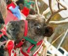 Reno navideño con un collar de cascabeles