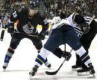 Jugadores en un partido de hockey sobre hielo
