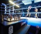 El chess boxing, es un deporte híbrido que combina el ajedrez y el boxeo.