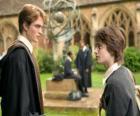 Harry Potter y su amigo Cedric Diggory