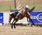 Cowboy montando un caballo encabritado en un rodeo