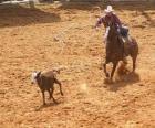 Cowboy o vaquero cabalgando y atrapando una res con el lazo