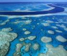 La Gran Barrera, el conjunto de arrecifes coralíferos más extenso del mundo. Australia.