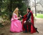 Príncipe de rodillas ante la princesa regalandole una rosa