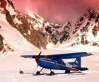 Avioneta Cessna 185 en la nieve