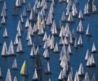 Regata barcos de vela