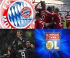 Liga de Campeones - UEFA Champions League semifinal 2009-10 ,FC Bayern München - Olympique Lyonnais