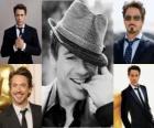 Robert Downey Jr. es un actor de cine estadounidense nominado dos veces a los Premios Óscar y ganador de dos Globos de Oro, además de cantante y compositor.